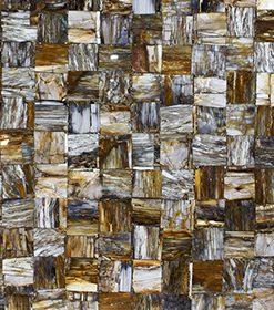 Petrified Wood Brown Jurassic