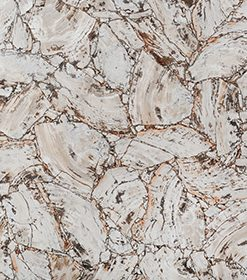 Petrified Wood White Leather Finish